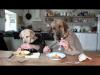 Dwa psy jedzą obiad