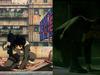 Matrix jest plagiate...