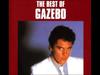 Gazebo   I Like Chop...