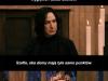 Harry Potter histori...